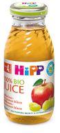 HIPP ŠŤÁVA BIO Jablečno-hroznová 200ml