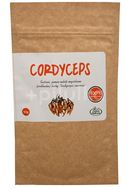Zlatý doušek Cordyceps Sinesis 100% mycélium 50g