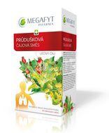 Megafyt Průdušková čajová směs Léčivý čaj 20x1.5g