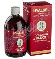 Hyalgel Collagen MAXX višeň 500ml