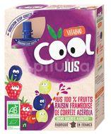 Vitabio Cool BIO Jus hroznové víno, malina a acerola 4x105ml