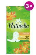 Naturella intimky Normal Calendula 3x20ks