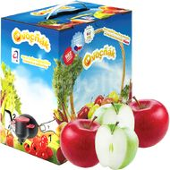 Ovocňák mošt jablko 100% 3l