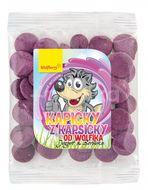 Wolfberry Kapičky z kapsičky od Wolfíka-jogurt, borůvka 17g