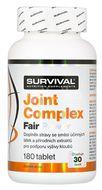 Survival Nutrition Joint Complex Fair Power 180 tablet