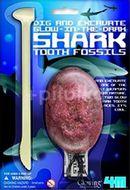 4M Vykopejte si žraločí zub