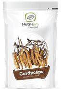 Cordyceps Powder 125g Bio